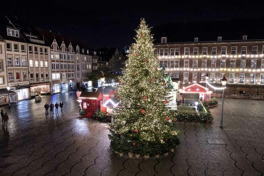 Tanne vor dem Rathaus verbreitet vorweihnachtliche Stimmung